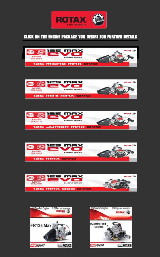 LSR Motorsports - 574-532-6180 - Rotax kart engines